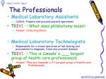 the professionals1