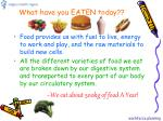 what have you eaten today