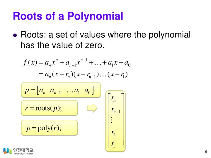 Roots of a Polynomial