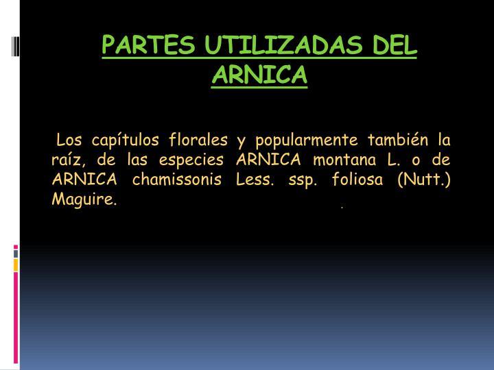 PARTES UTILIZADAS DEL ARNICA
