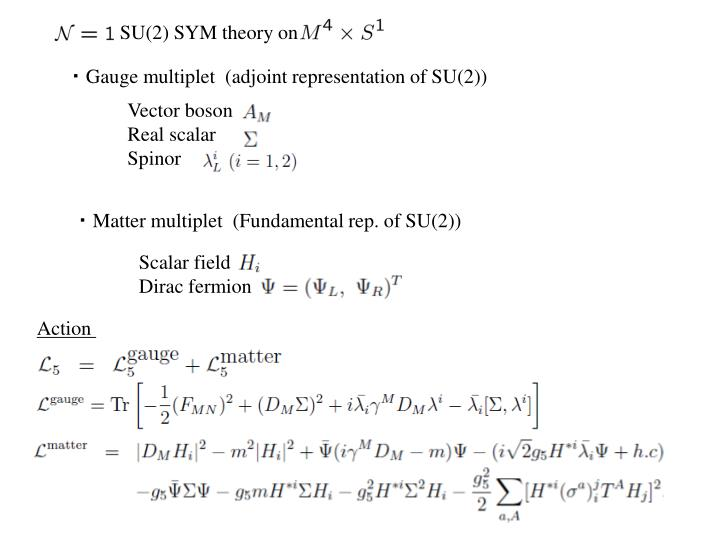 SU(2) SYM theory on