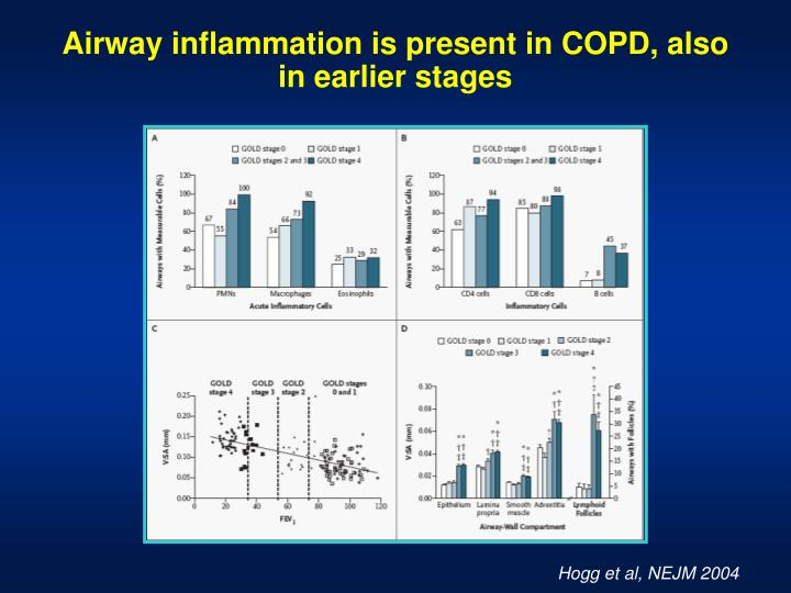 Airway inflammation is present in COPD, also in earlier stages
