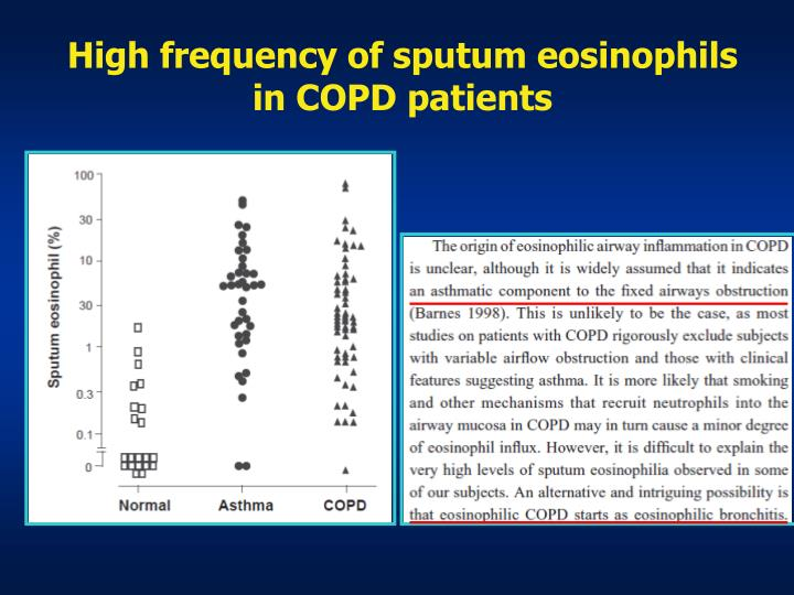 High frequency of sputum eosinophils