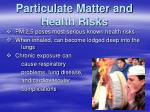 particulate matter and health risks