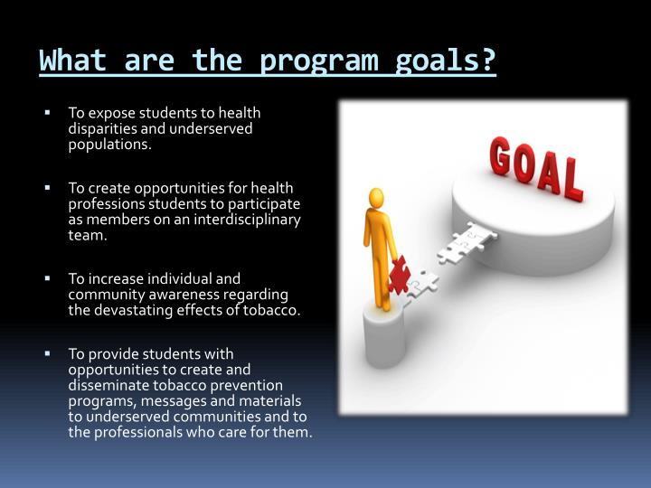 What are the program goals?
