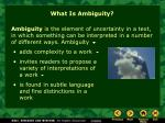 what is ambiguity