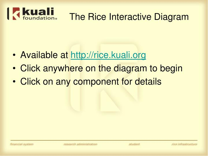 The Rice Interactive Diagram