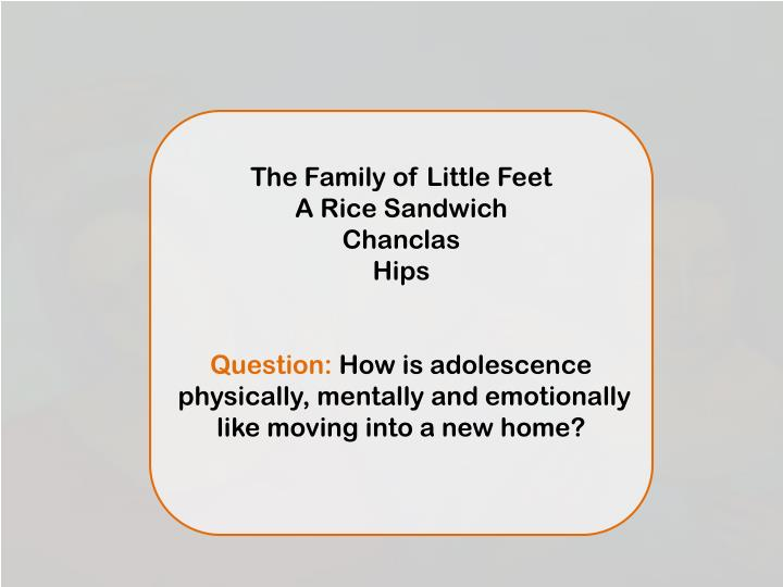 the house on mango street a rice sandwich summary