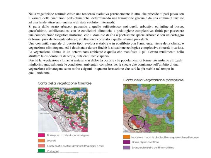Nella vegetazione naturale esiste una tendenza evolutiva perennemente in atto, che procede di pari p...