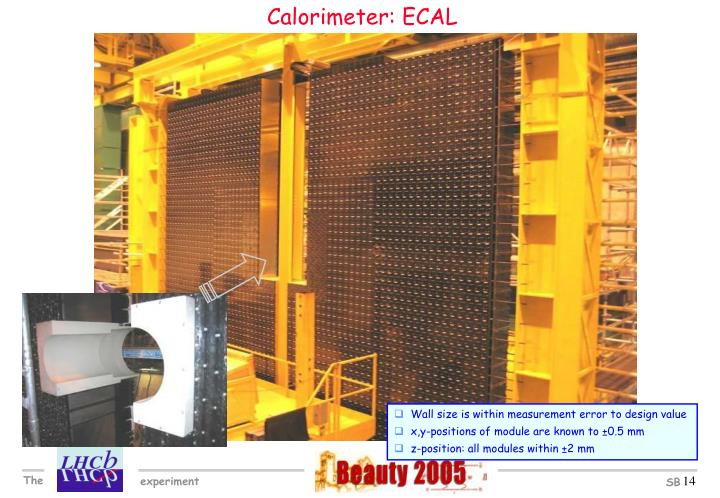 Calorimeter: ECAL