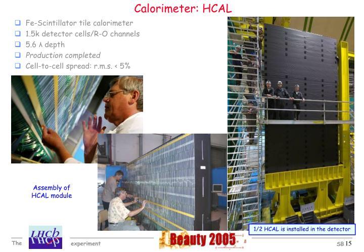 Calorimeter: HCAL