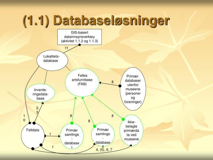 (1.1) Databaseløsninger