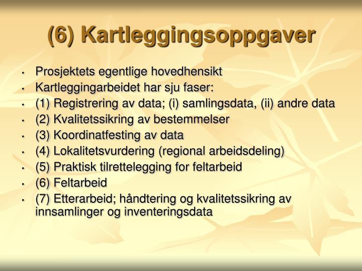 (6) Kartleggingsoppgaver