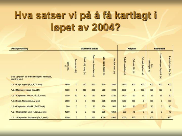 Hva satser vi på å få kartlagt i løpet av 2004?
