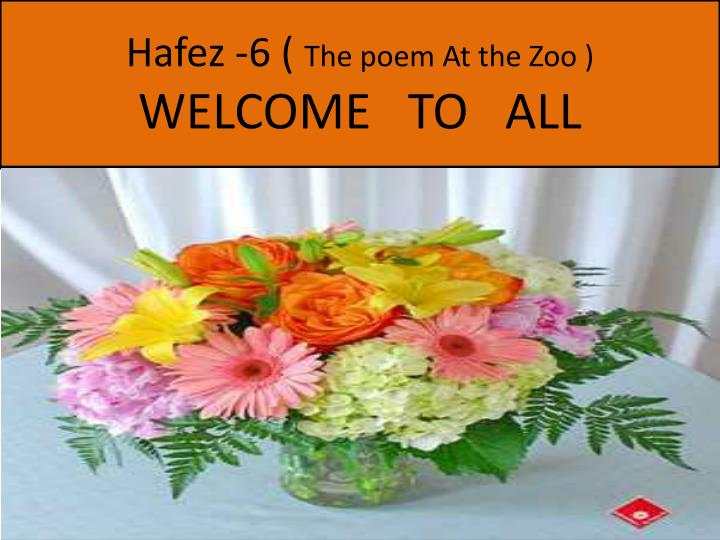 hafez 6 the poem at the zoo welcome to all n.