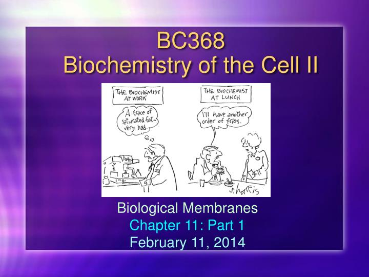 bc368 biochemistry of the cell ii n.