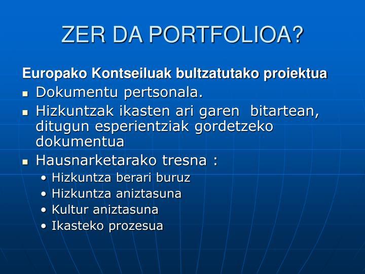 Zer da portfolioa