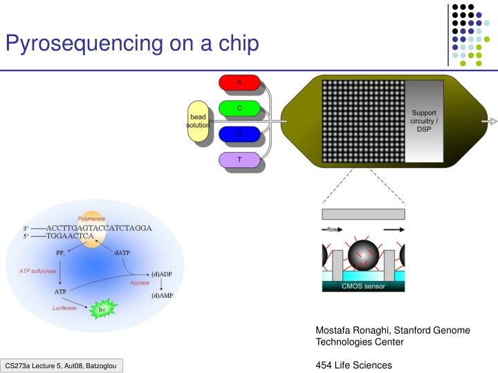 Pyrosequencing on a chip