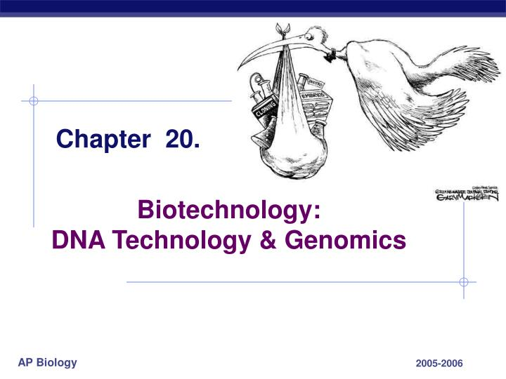 biotechnology essay questions One of the wonders of science is the amazing world of biotechnology when scientists ask questions, new technology offers them answers they never dreamed of in the past.