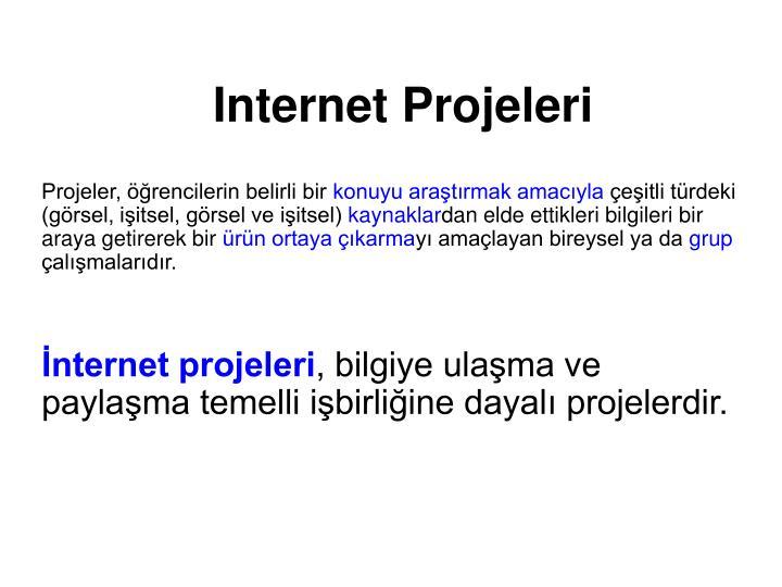 Internet projeleri2