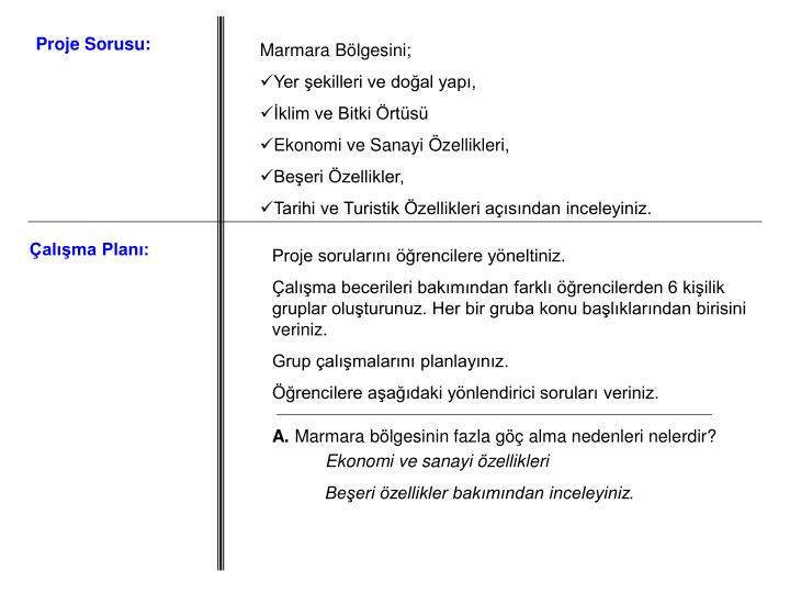 Proje Sorusu: