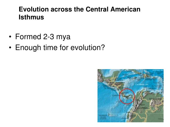 Evolution across the Central American Isthmus