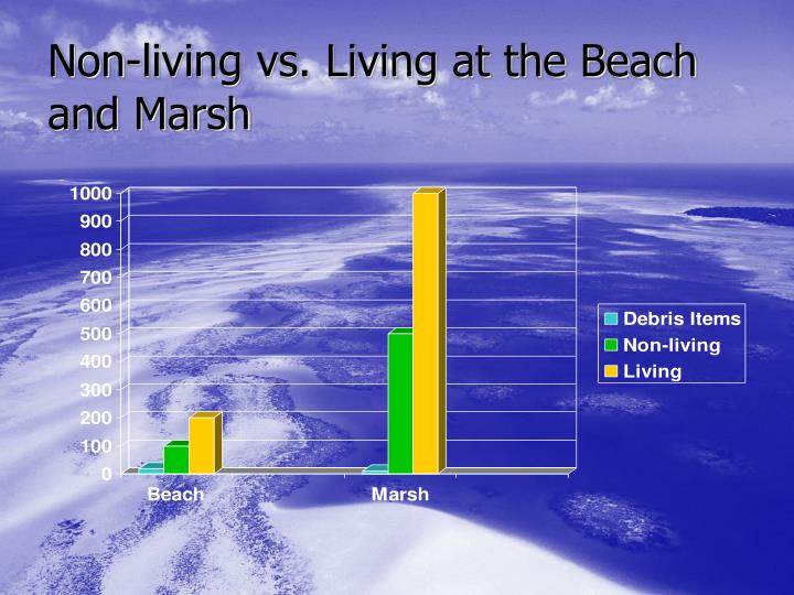 Non-living vs. Living at the Beach and Marsh