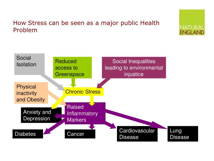 How Stress can be seen as a major public Health Problem