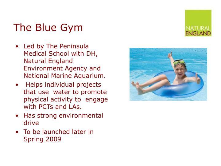The Blue Gym