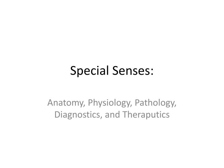 PPT - Special Senses: PowerPoint Presentation - ID:5401248