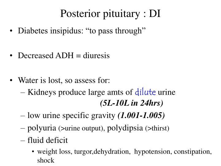 Posterior pituitary : DI