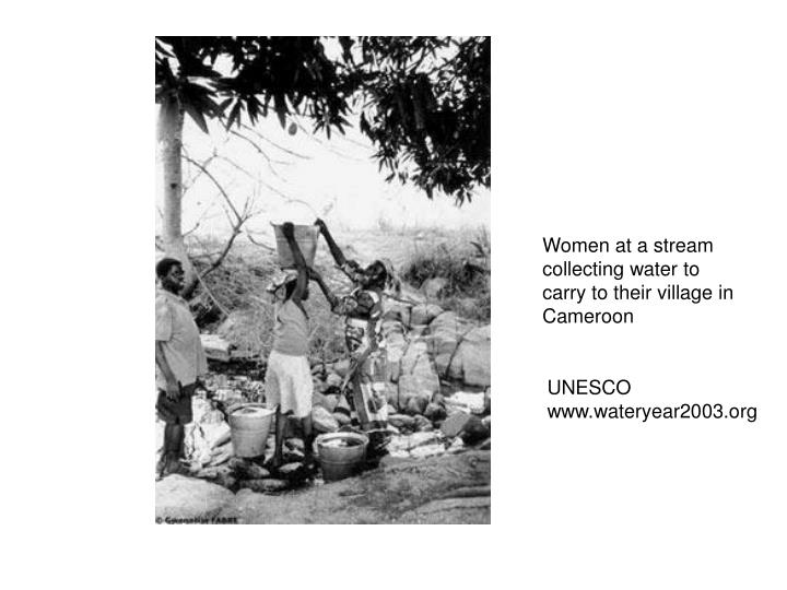 Women at a stream collecting water to carry to their village in Cameroon