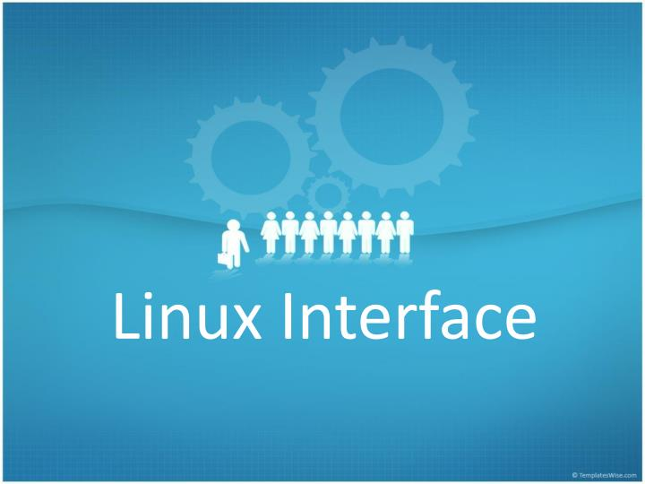 Linux Interface