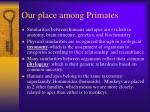 our place among primates