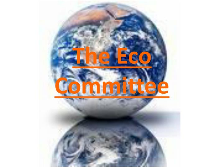the eco committee n.