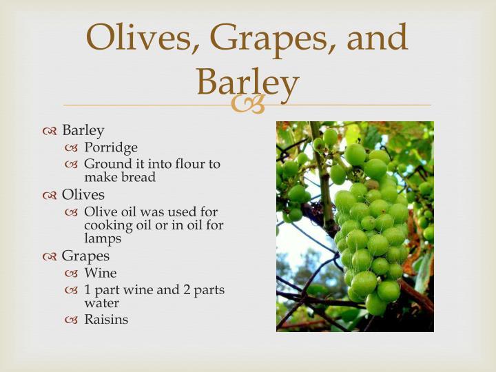 Olives grapes and barley
