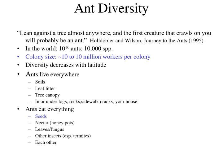 Ant Diversity