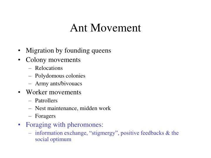 Ant Movement