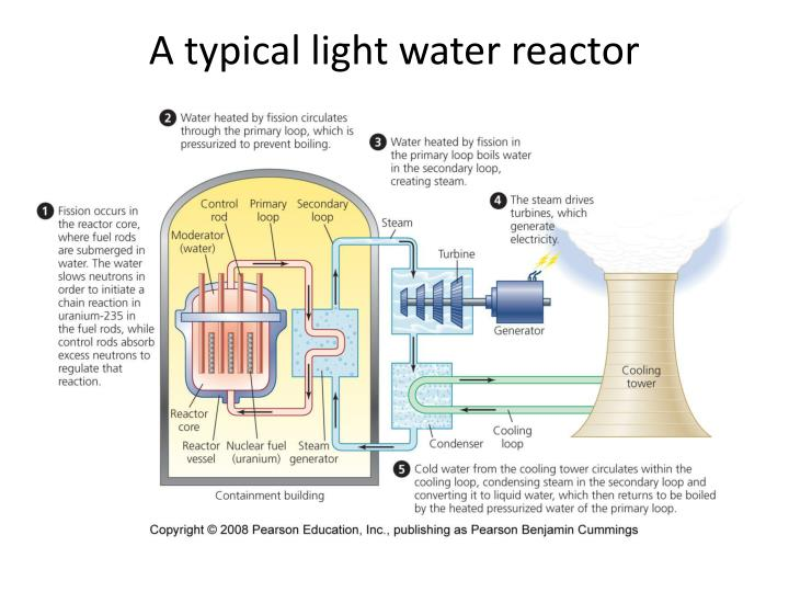 A typical light water reactor