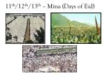 11 th 12 th 13 th mina days of eid
