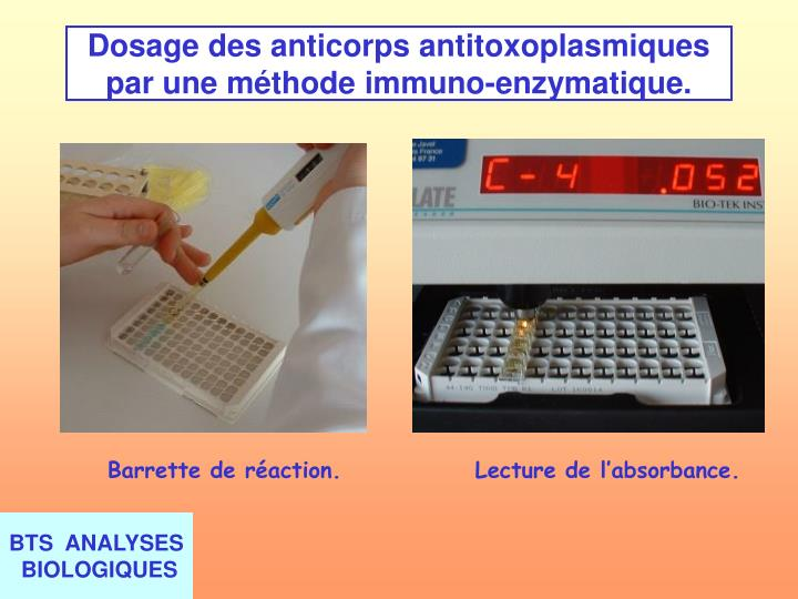 Dosage des anticorps antitoxoplasmiques