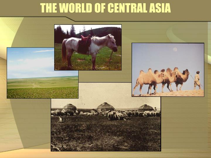 The world of central asia