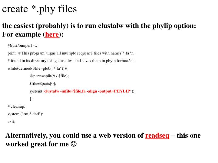 create *.phy files
