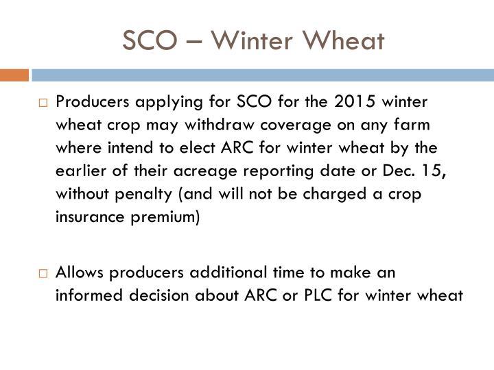 SCO – Winter Wheat