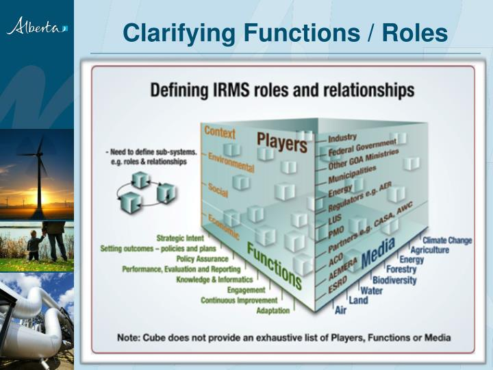Clarifying Functions / Roles