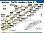sediment profile imaging at area e