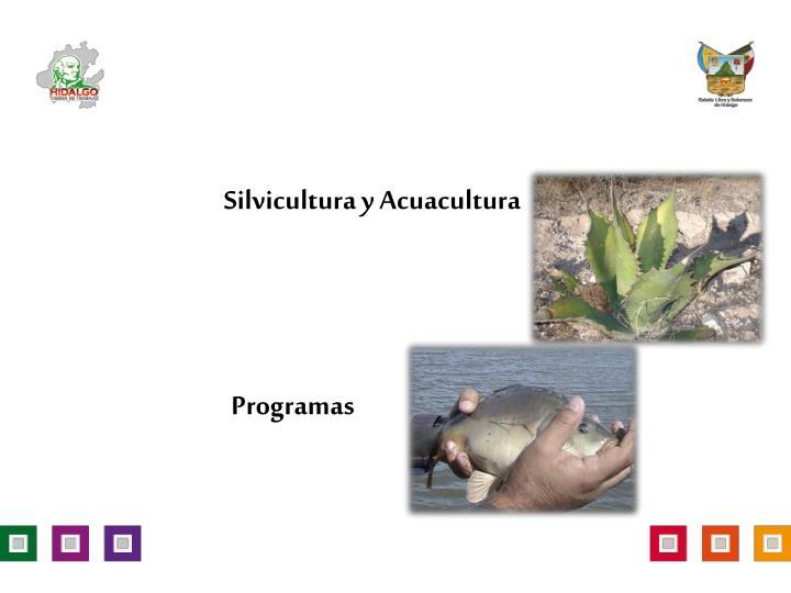 Silvicultura y Acuacultura