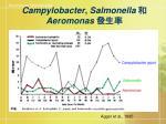 campylobacter salmonella aeromonas