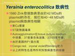 yersinia enterocolitica5