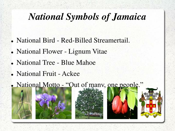 Ppt Jamaica By Charlotte Green Powerpoint Presentation Id5409164